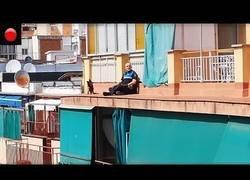 Enlace a Rescate de un perro atrapado en la cornisa de un edificio