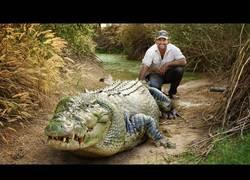 Enlace a Conoce a Trípode, el gigantesco cocodrilo de una tonelada