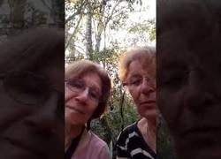 Enlace a Dos argentinas se pierden y suben un vídeo para que las rescaten!