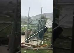 Enlace a Así es uno de los resultados del huracán Dorian