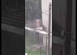 Enlace a Vienen lluvias y la economía está muy mal