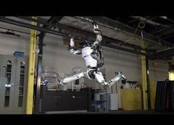 Enlace a Los robots también tienen derecho a divertirse