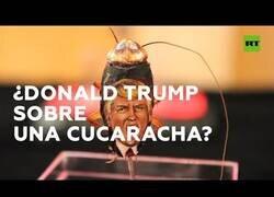 Enlace a Un artista mexicano dibuja retratos sobre cucarachas