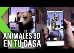 Enlace a Google te permite ver animales 3D en tu casa