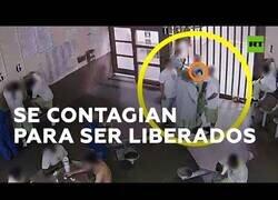 Enlace a Presos se intentan contagiar de coronavirus para ser liberados