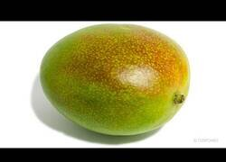 Enlace a ¿Cuánto tarda un mango en descomponerse?