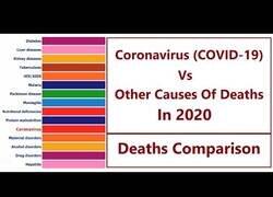 Enlace a Comparando el coronavirus con otras causas de muerte en 2020