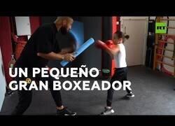 Enlace a Un niño de 8 años con grandes habilidades para el boxeo