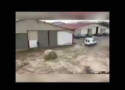Enlace a El vídeo que demuestra que la Citroen c15 es la mejor furgoneta de la historia