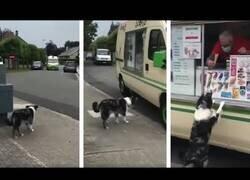 Enlace a La emoción de este perro al ver llegar el camión de los helados