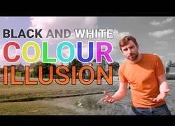 Enlace a Esta ilusión óptica engaña totalmente al cerebro y ves de color una imagen que es realmente blanco y negro