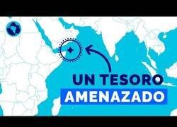 Enlace a Socotra, una isla que parece de otro mundo