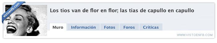 capullo,de flor en flor,flor,ligar