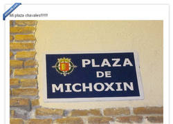 Enlace a Plaza de Michoxin