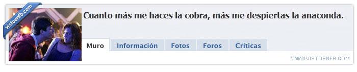 Cobra,Facebook,Grupo