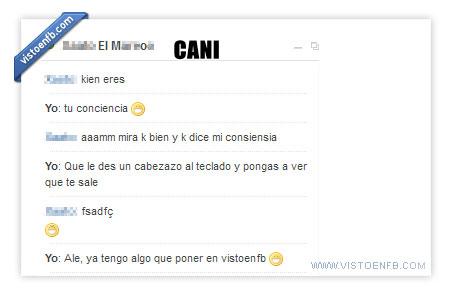 cani,chat