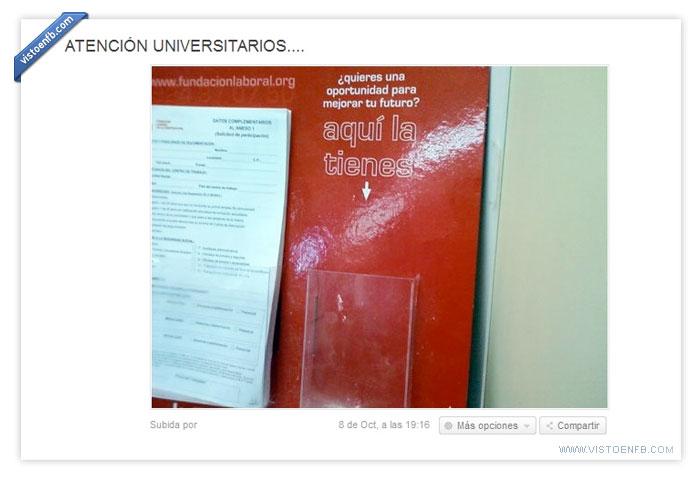 futuro,laboral,Universidad
