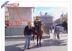 Enlace a Los nuevos dromedarios de la policía