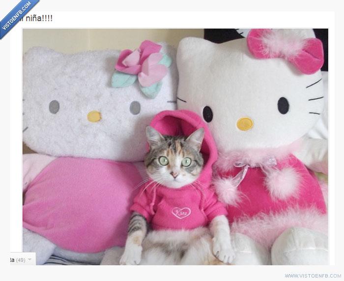 animal,disfraz,gato,hello kitty,peluche