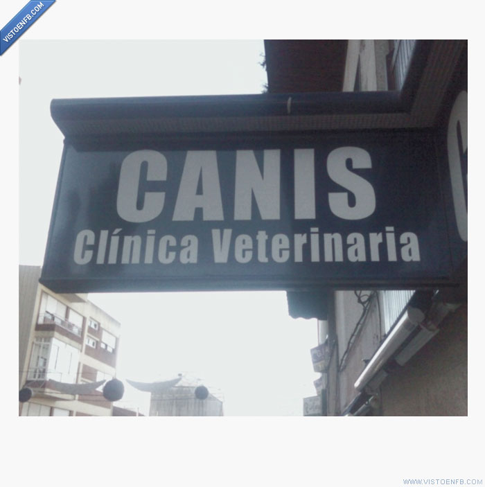 cani,cartel,clinica veterinaria