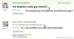 Enlace a Tiburones gay