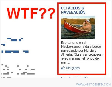 agua,bote,Cetáceos,gordo,gráfica,navegación,timo,WTF,WTF?