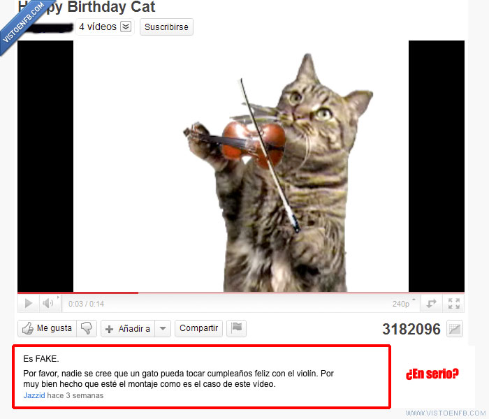 facepalm,fake,gato,violín,youtube