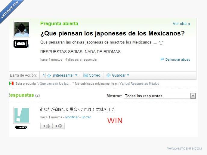 japones,pregunta,tonta