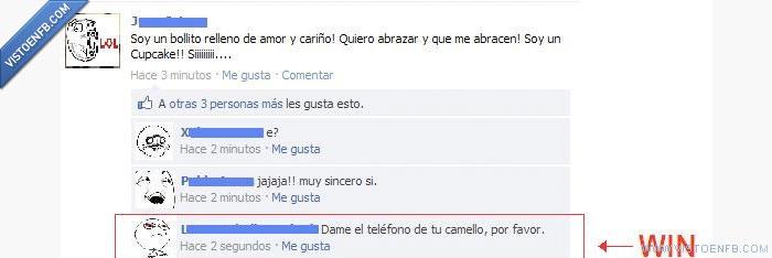 camello,cupcake,drogas,facebook,win