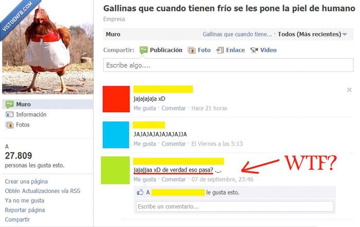 Gallina,humano,wtf