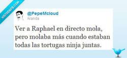 Enlace a Raphael mola