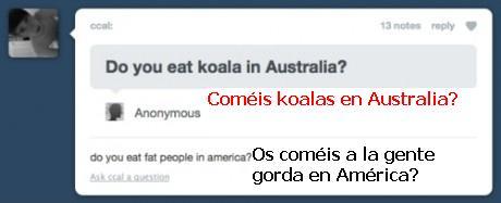 australia,comer,koala,preguntas
