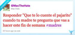 Enlace a El pajarito que se lo cuenta a tu madre por @MacTheHate