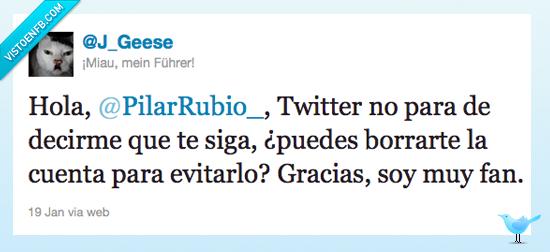 borrar,cuenta,fan,Pilar Rubio,twitter