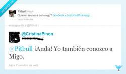 Enlace a Pitbull y su amigo Migo por @CristinaPinon