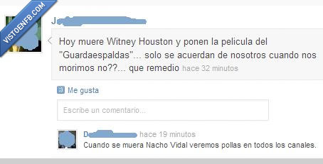 nacho vidal,tv,witney houston