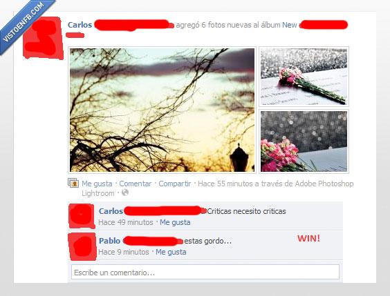 album,criticas,facebook,foto,fotografo,Gordo,insulto,Win