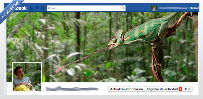 biografia,camaleon,collage,cronologia,foto,montaje,perfil,timeline