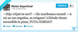 Enlace a ¡Gorda! por @Mr_Superficial