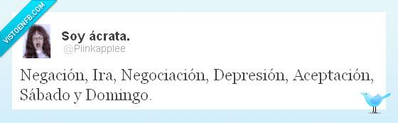 aceptación,depresión,dias,domingo,ira,negación,negociación,rabia,sábado,twitter