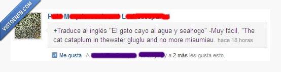 agua,cayo,fácil,gato,ingles,miaumiau,traducir