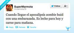 Enlace a El mejor plan ante el apocalipsis zombie por @marmota79