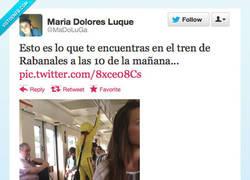 Enlace a Lo típico en el tren por @MaDoLuGa