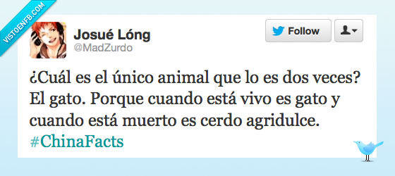 agridulce,ascazo,cerdo,chino,dos veces,gato,twitter