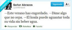 Enlace a Dime algo que no sepa por @SrAbrazos