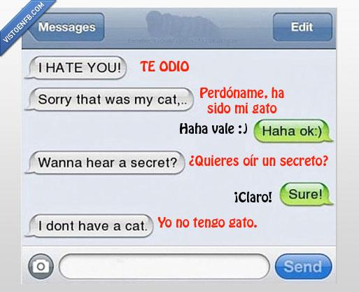 conversación,gato,móvil,te odio