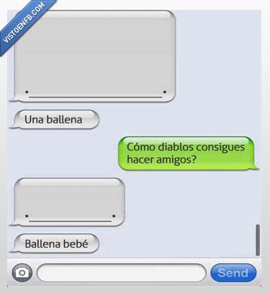 amigos,ballena,bebe,whatsapp