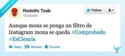 Enlace a Reciclemos el refrán por @tzabake