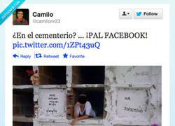 Enlace a Vuelve la moda de las fotos en cementerios por @camilonr23