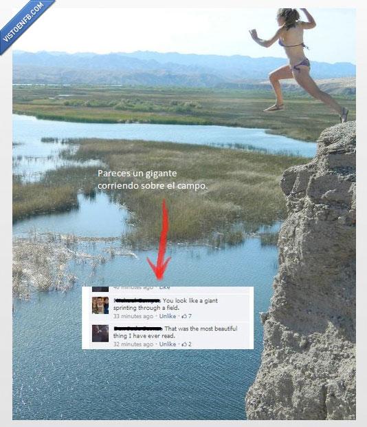 agua,campo,gigante,perspectiva,salto,troll